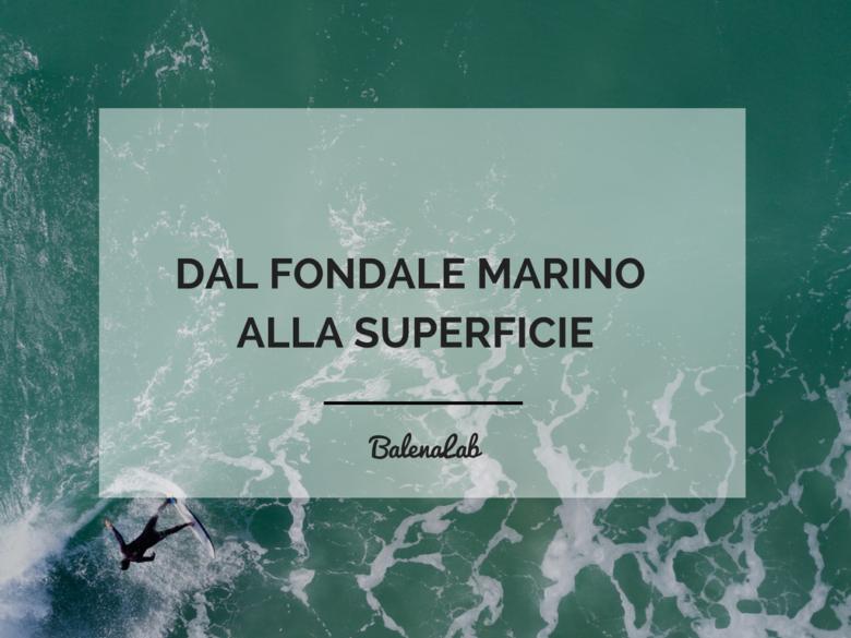 Questionario | Marino | Brand | Balenalab